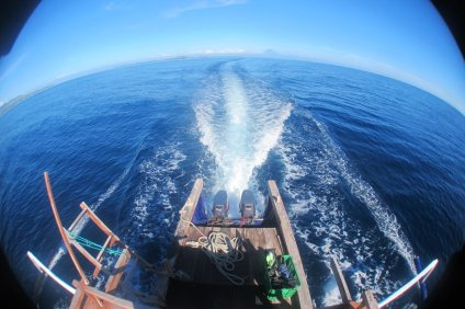 Blue Marlin Dive Boat Goes On The Search